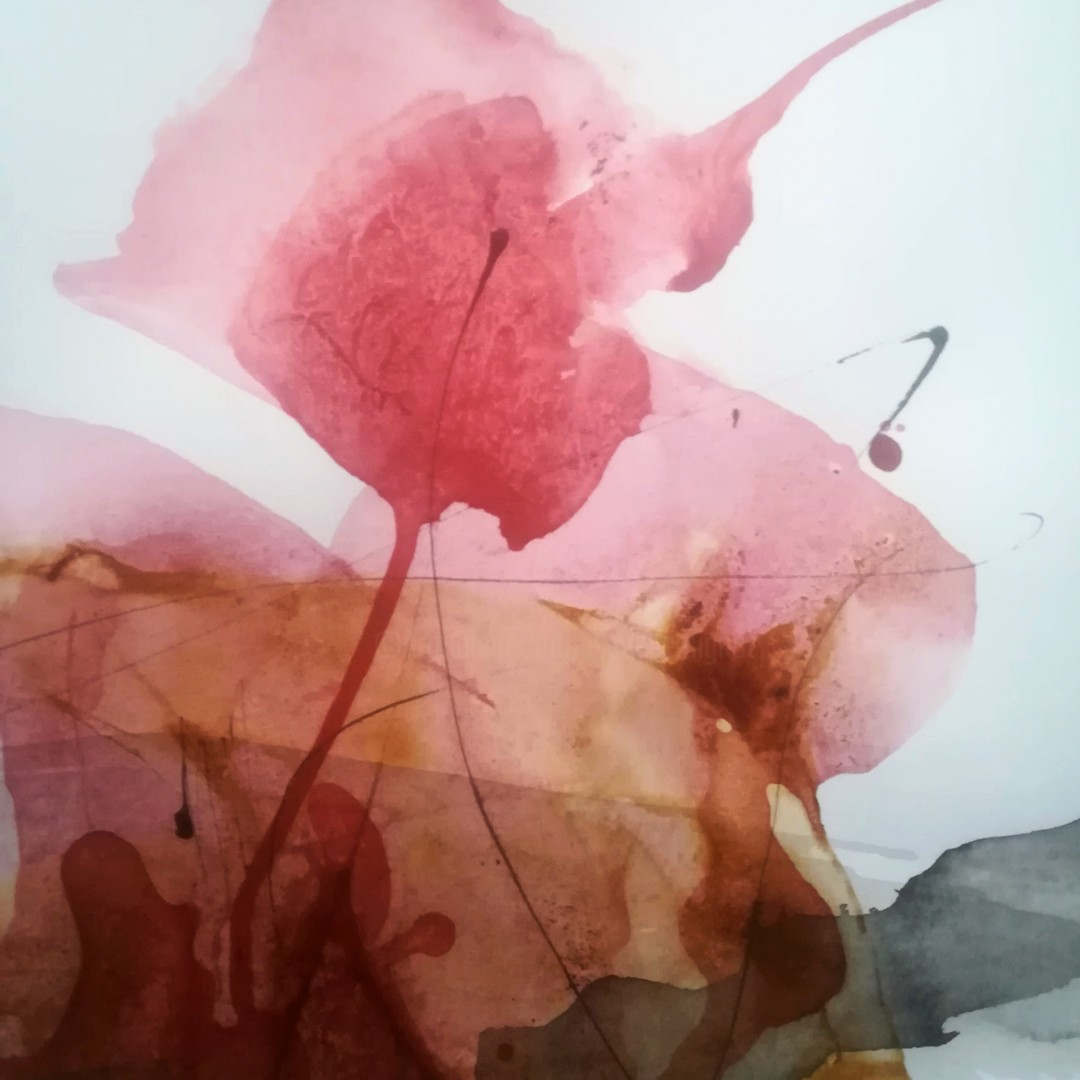 Isabelle Mignot - De deux cordes une seule voix ... (12)